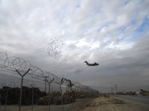 Trucks and birds - part of the loggie experience in Afghanistan