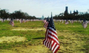 IAVA placed 1,892 flags on the National Mall yesterday to mark the number of veteran suicides so far this year